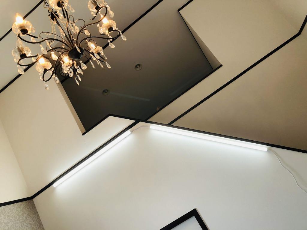 蛍光灯型LED照明